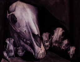 Skull Still Life by IncrediblyForkable