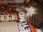 The Cat Who Reads Newtype - 3 by ElryBoy