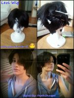 My Levi Wig by Levi-Ackerman-Heicho