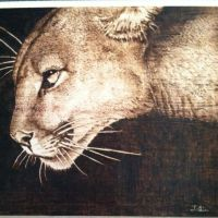 On the Prowl by JLinPyrography