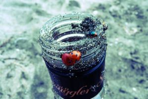 Bugs On The Bottle by ols-bels