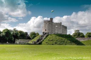 Cardiff Castle 2010 by Rovanite
