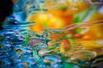 COLORED WATER MACRO STOCK by ArwenArts