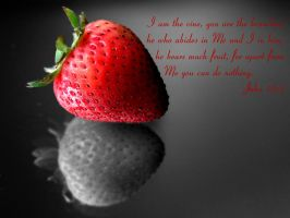 WPE: Strawberry Fruit by christians