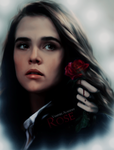 Rose by AlessandraTheBest