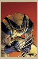 Wolverine 305 Cover by mastr240