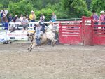 33 goshen rodeo by dragon-orb