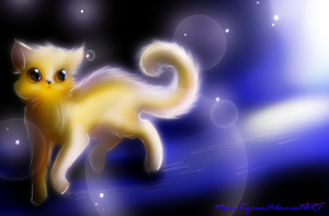 Kitten in the cosmos by Mari-Kyomo