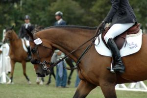 Jumper Stock 6 by iheartsomersby