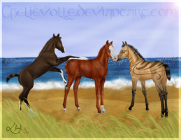 The Varjo Foals by Faejala