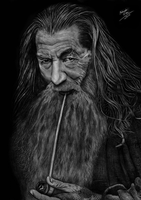 - GANDALF, The Grey - by EduardoLeon