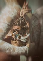 The Cage... by sistersinnister