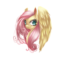Fluttershy: My Little Pony by dream--chan