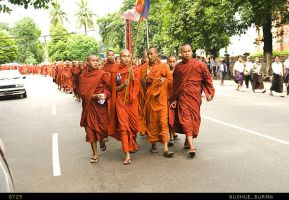 Monks Protest by mjbeng