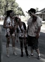 Last years zombie walk! by immckenzieakilljoy