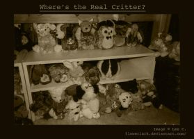 Where's the Real Critter by Flowerlark