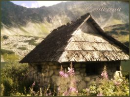the Tatras '10 - the hut by Ecaterina13
