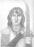 High Commander of the Elves by seclusivebeauty