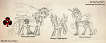Pony Princess Size Comparison by spartydragon