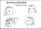 Masked Owls of Ga'hoole by Spectra-Sky