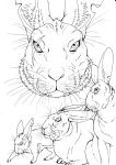 Watership Down - Efrafa lineart by LadyFiszi