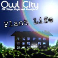 Owl City - Plant Life by GalaxyInvader