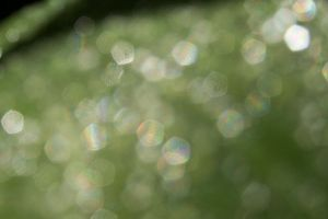 Bokeh Texture 4 by Pinkfirefly135