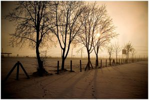 winter warmth by narcissus-
