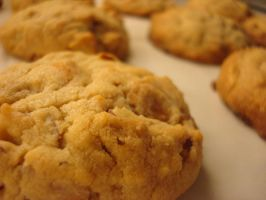 Butterscotch Almond Cookies by Aisho