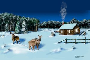 Whitetail Winters Eve by Belote-Art