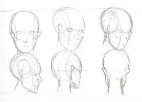 Human Anatomy: Head Study 3 by SeanSumagaysay