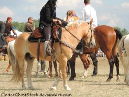 Hungarian Festival Stock 058 by CinderGhostStock