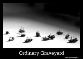 Ordinary Graveyard by NorthernGirl777