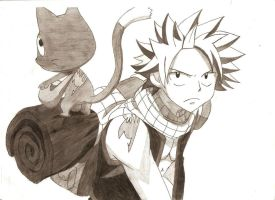 Natsu and Happy by LeutGreed