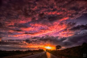 Highway to hell by Brigitte-Fredensborg