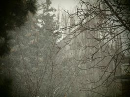 Snow falls without sound by MotherBlessing