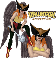 Hawkgirl round 1 entry by Lil-Hawk