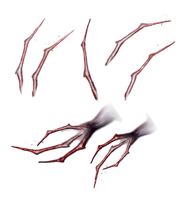 Claws Fingers Or Nails PNG by VelmaGiggleWink