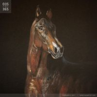 035: Horse Speed Painting by legomov