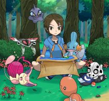 Finding the Next Route by General-Mudkip