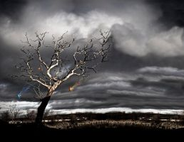 The Hanging Tree by Eicats