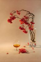 Ashberry in cognac by mariall