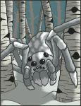 Frosted Spider - Wayfinder 6 by ToddWestcot