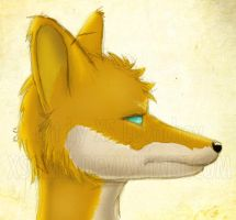 Nickale - Perfil by xsonic