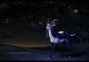 Into the Night by apeldille