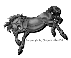 Bucking Horse Gray Scale by ShapeShifter314