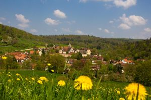 Spring Over Bebenhausen by DeviantTeddine