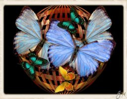 Butterfly Basket by GypsyH