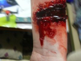 Special Effects Make Up by tree27