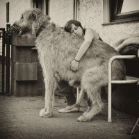 .: Dogs and Daughters :. by Frank-Beer
